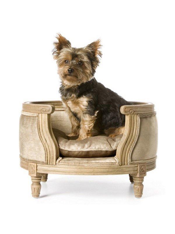 Accesorios para perros for Accesorios para mascotas