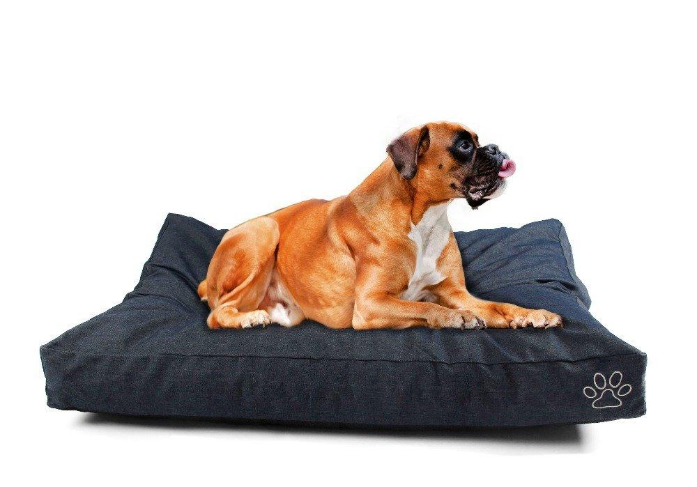 Las 5 Mejores Mantas Electricas Para Perros Perrosamigos Com