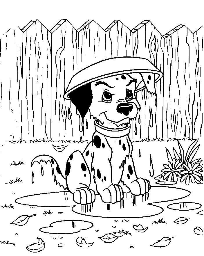 Dibujos de perros para colorear PerrosAmigoscom