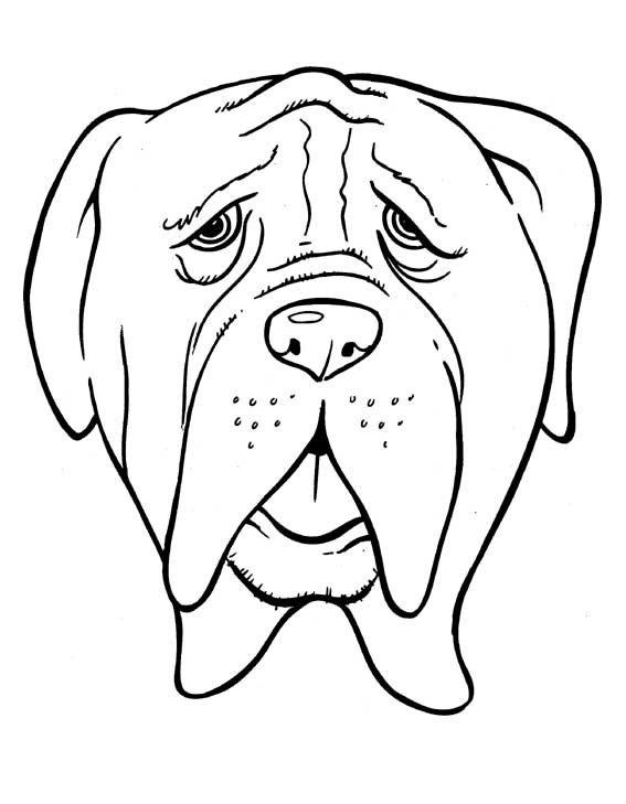 Dibujos de razas de perros para pintar PerrosAmigoscom