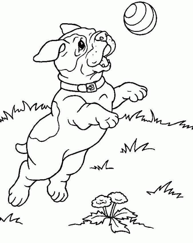 Dorable Páginas Para Colorear De Bebé Pug Adorno - Dibujos Para ...