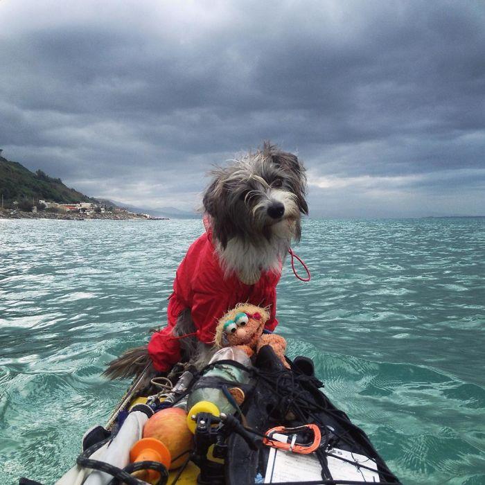 Como hacer 5.000 km de kayak con tu perro (5)