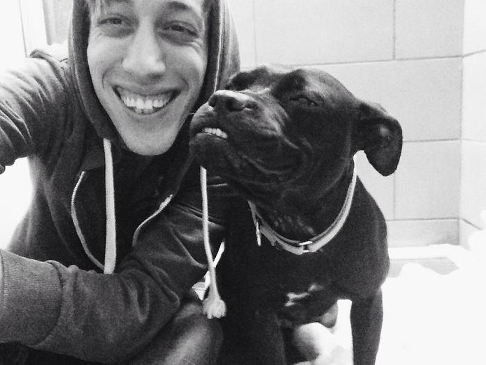 Fotos de perros felices 9