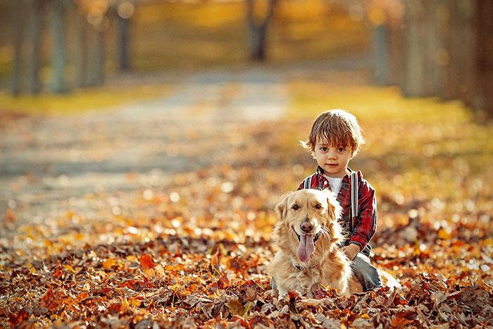 Perros Cuidando De Beb 233 S Perros Amigos
