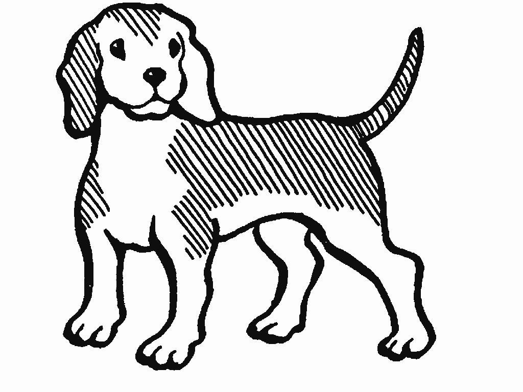 ... dibujos de perros para colorear y que os lo hayais pasado muy bien